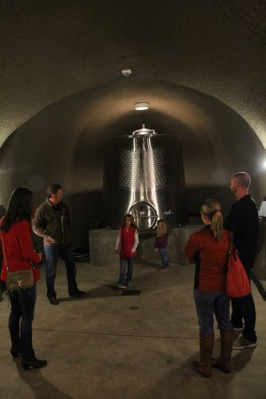 Perata Luxury Tours: John Conover teaching us about how wine is made