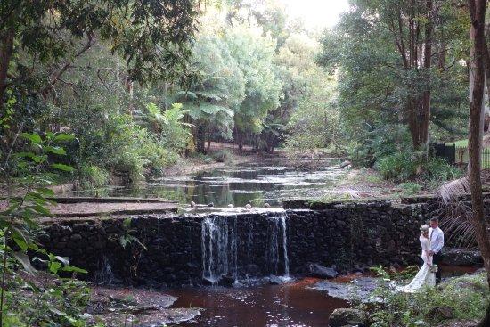 Escarpment Retreat: photo0.jpg