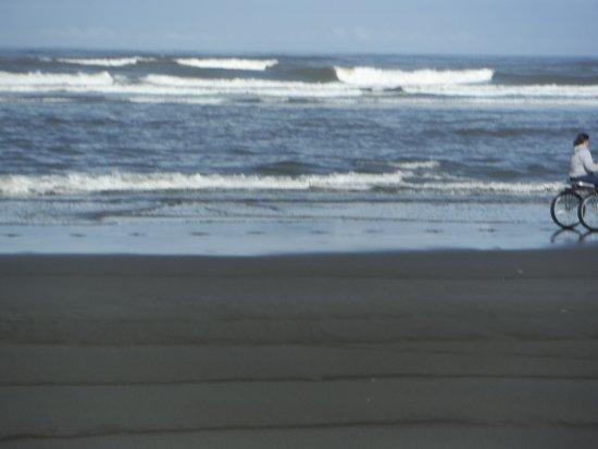 Ocean City State Park Foto