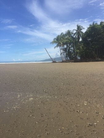Province of Puntarenas, Costa Rica: photo7.jpg