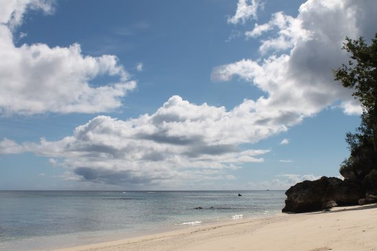 South Pacific Cruises - Coongoola Day Cruise: photo1.jpg