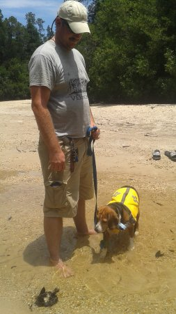 Blackwater River State Recreation Area: the hubby and the fur baby