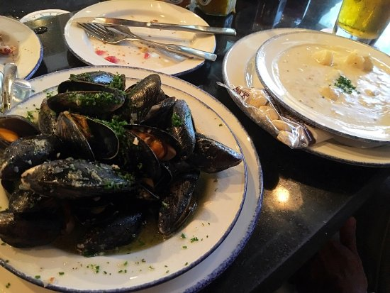Rodney's Oyster House: Fresh oysters at $3.60 a piece and done HH specials