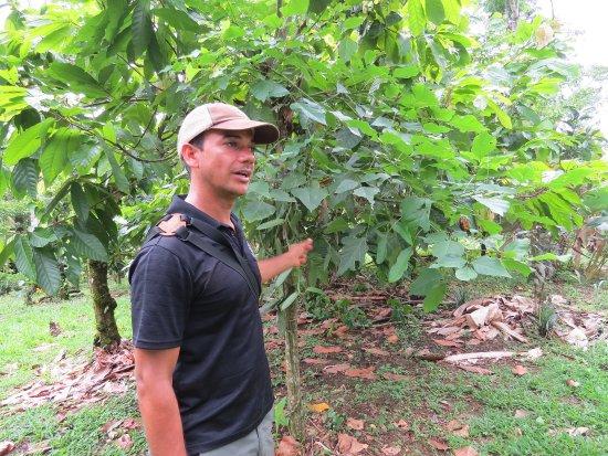 فينكا لونا نويفا لودج: Ishmael, our guide on the farm tour