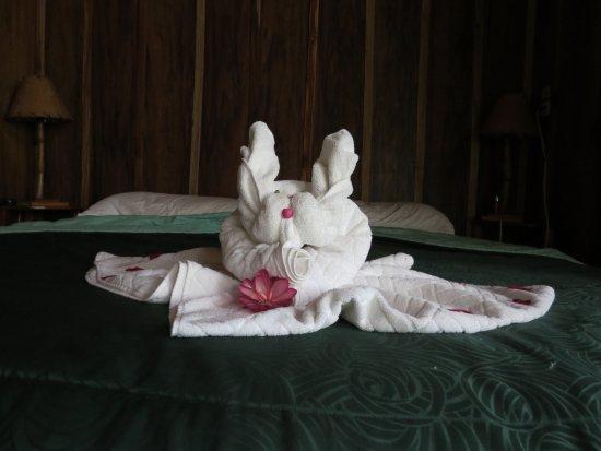 فينكا لونا نويفا لودج: Every night a new bed decoration