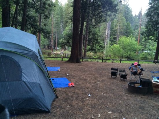 Lower Pines Campground: LARGE area campsite