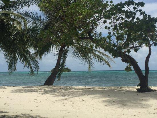 Adaaran Select Hudhuranfushi: La mer, les requins, la plage