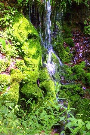 Brockway, Pensilvania: A waterfall falling on moss