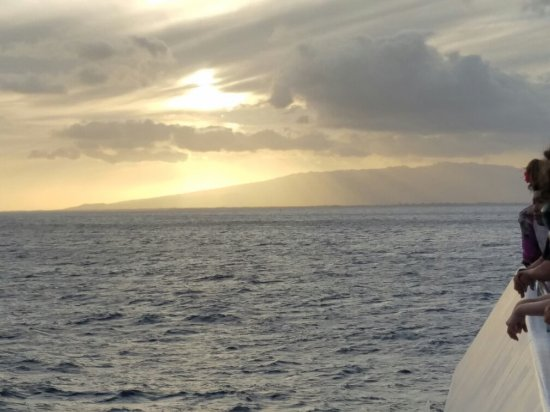 Star of Honolulu - Dinner and Whale Watch Cruises: 20160701_185119_001_large.jpg