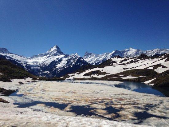 グリンデルワルト, スイス, photo0.jpg