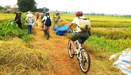 IXO Bike Tours