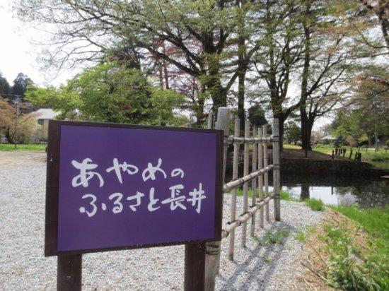 Nagai, Japon : あやめのふるさと