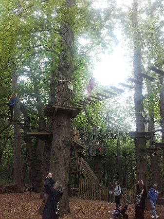 Go Ape at Leeds Castle: at the start