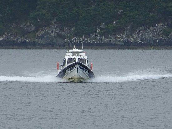 The Tayvallich Inn: Jura Ferry!!!