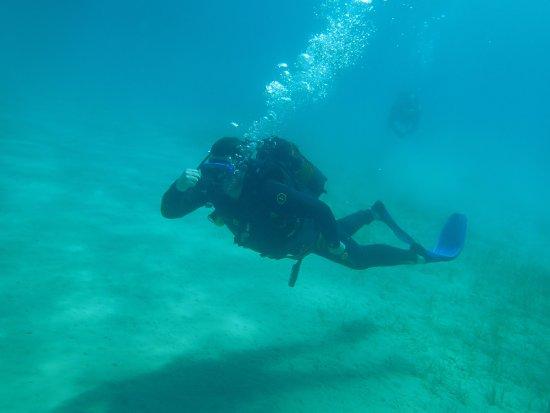 Evelin Divers : Bruce Forsyth?
