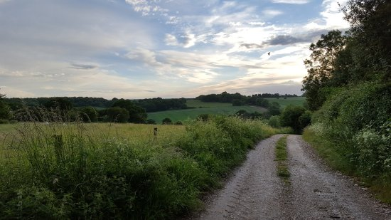 Chute, UK: The view down the lane just a few metres from the pub