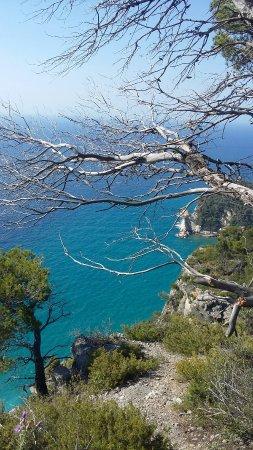 Spiagge di varigotti.... e bagni al saraceno - Foto di Spiaggia di ...