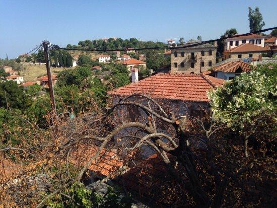 Λαύκος, Ελλάδα: Fyloma vista molto bella, colazione ottima