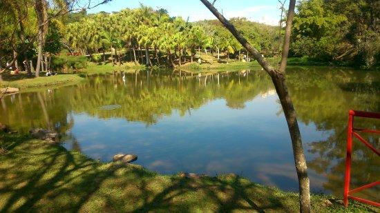 Parque Natural Municipal da Água Vermelha João Câncio Pereira: Olha essa paisagem!