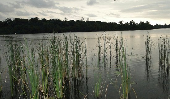 بينتوتا, سريلانكا: Bentota River