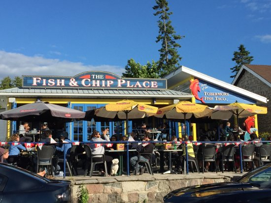 Whitefish picture of the fish chip place tobermory for The fish place