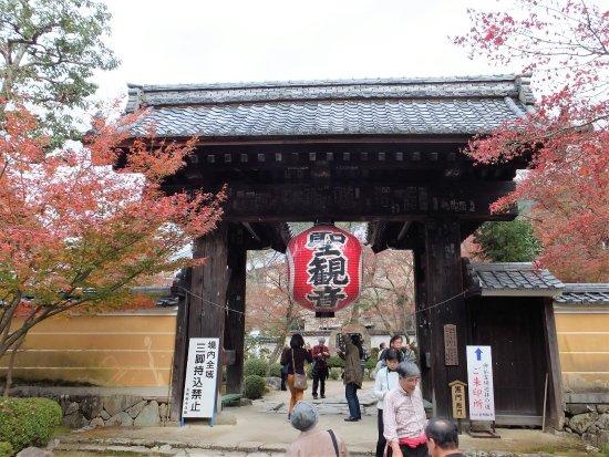 Aisho-cho, Japón: 「血染めのもみじ」は必見です。
