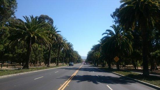 Palo Alto, CA: IMG-20160701-WA0012_large.jpg