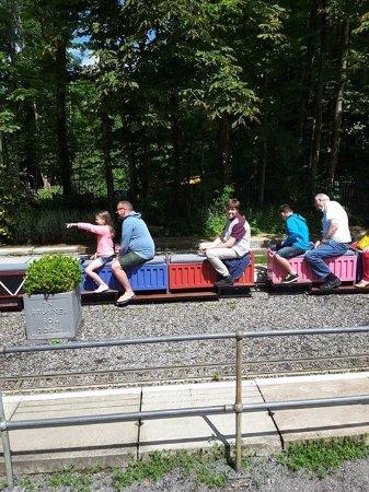 Mizens Railway: My son on the miniture trains