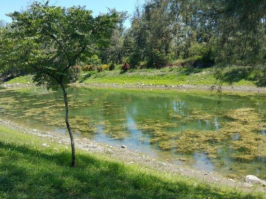 Pipa Lake