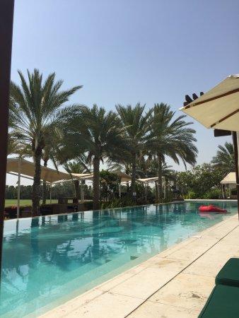 Desert Palm PER AQUUM: photo1.jpg