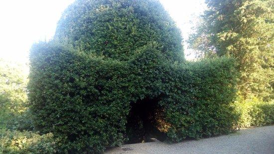 Gambassi Terme, Italië: Il parco pubblico adiacente le Terme.