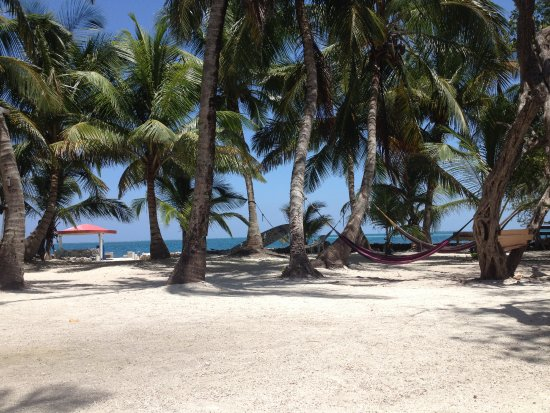 ReefCI : This is the only time I ever saw the hammocks empty!