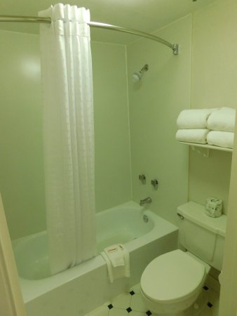 Days Inn & Suites Arlington Heights: Bathroom