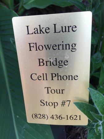 Lake Lure, Carolina del Norte: photo9.jpg