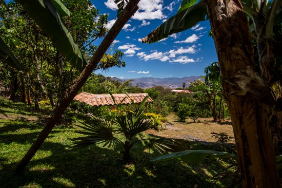 La Union, Ekwador: Overlooking the Andean mountains from the property