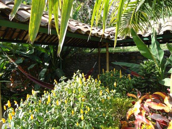 La Union, Ecuador: Hammock area