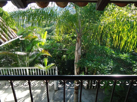 La Union, Ecuador: View from porch into garden
