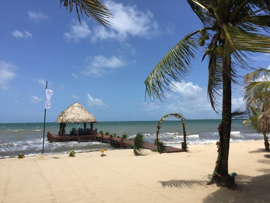 Green Parrot Beach Houses: Beach beautifully decorated for our wedding
