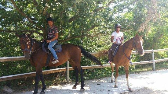 Montieri, إيطاليا: Bellísima gita a cavallo.