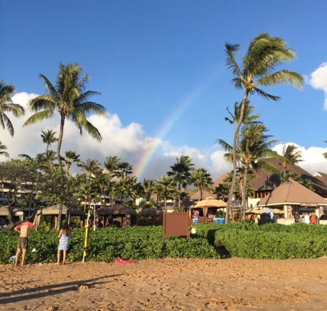 Greeted by a rainbow on our first visit to the beachfront!