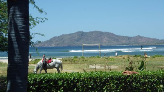 Witch's Rock Surf Camp 사진