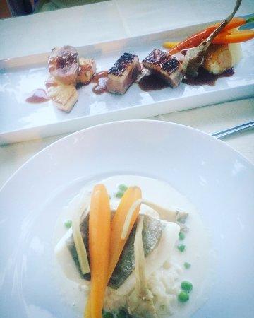 Restaurant Nicolas Juste : Duck and Fish
