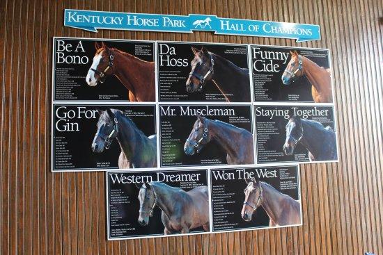 Kentucky Horse Park : Hall of Champions