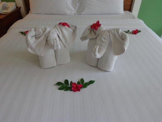 Andaman Seaview Hotel Resmi