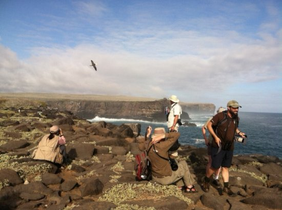 Espanola, Ecuador: Albatross takes to the sky
