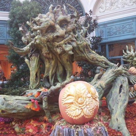 jardin dans la thématique de l'automne/Halloween