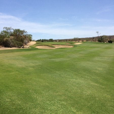 Desert Course at Cabo del Sol: photo2.jpg