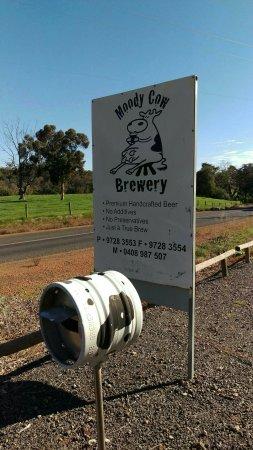 Moody Cow Brewery: IMAG2573_large.jpg