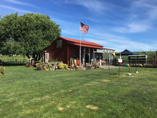 Bill's Berry Farm