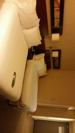 Holiday Inn Santiago Airport : IMG-20160702-WA0072_large.jpg